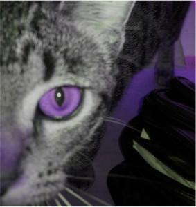 PurpleMiri01152011